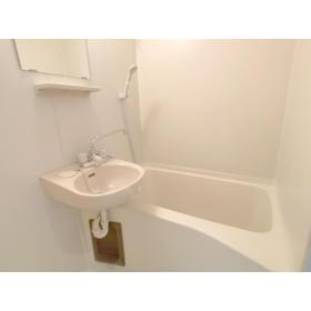 リブレス八木崎 旧レオパレス八木崎第2 204号室の風呂