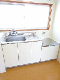 グリーンフラッツI 301号室のキッチン