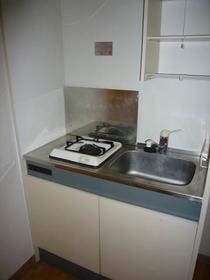 パークサイドコート 202号室のキッチン