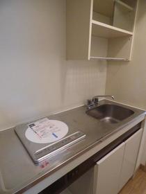 サンルミナスA 205号室のキッチン