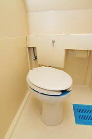 メゾン・ド・コライユ 0306号室のトイレ