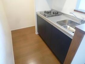 サントリーニ目黒 102号室のキッチン