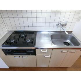 パークハイム深沢 302号室のキッチン