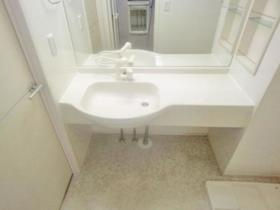 サンファースト A 103号室の洗面所