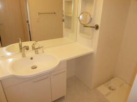 グランツ A 105号室の洗面所