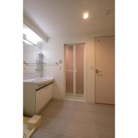 ベルフェリーク上野毛 0306号室の洗面所