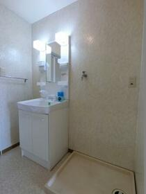 ネオ・アヴァンセ五代 弐番館 202号室の洗面所