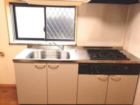 スターパレス21 203号室のキッチン