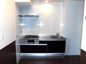 ペイサージュ箕田 102号室のキッチン