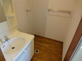 ブルックハウス C-101号室の洗面所