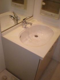 デュオ・スカーラ渋谷 405号室の洗面所