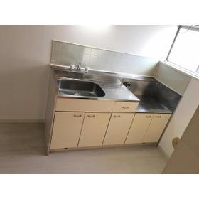 エステートピア伊奈 203号室のキッチン