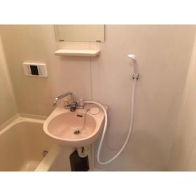 エステートピア伊奈 203号室の洗面所