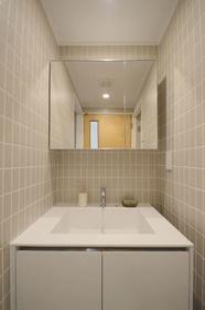 SOCIETY KAKINOKIZAKA WEST STAGE 102号室の洗面所