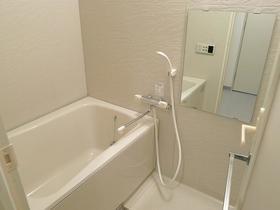 シュロス武蔵小山 203号室の風呂