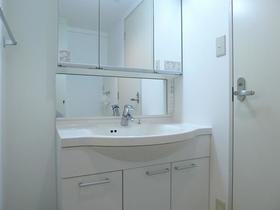 シュロス武蔵小山 203号室の洗面所