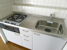 シュロス武蔵小山 203号室のキッチン