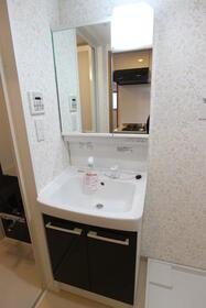 エメラルドブルー久が原 303号室の洗面所