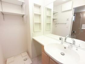 D-room思川ルージュ A 206号室の洗面所