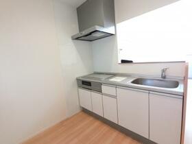 D-room思川オランジュ B 207号室のキッチン