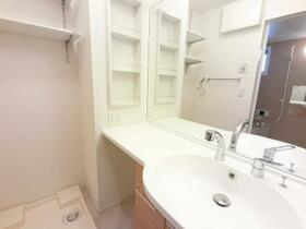 D-room思川オランジュ B 207号室の洗面所