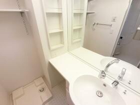 D-room思川ヴィオレ D 107号室の洗面所