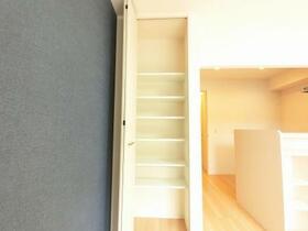 D-room思川ヴィオレ D 107号室の収納