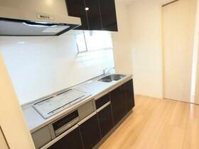 D-room思川ヴィオレ D 202号室のキッチン