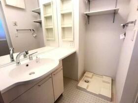 D-room思川ヴィオレ D 202号室の洗面所