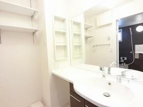 D-room思川ジョーヌ I 206号室の洗面所