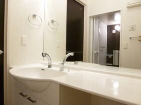 コスモス 202号室の洗面所
