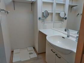 リアン 202号室の洗面所