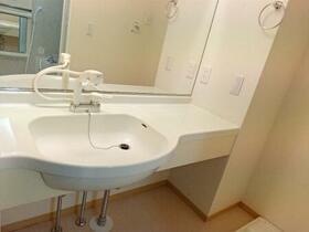 アネシス城北 B 203号室の洗面所