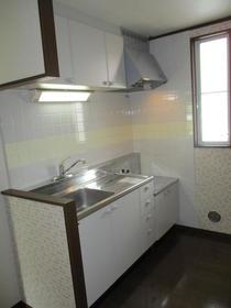 グリーンフィールド石阪B棟 102号室のキッチン