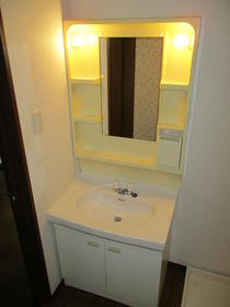 グリーンフィールド石阪B棟 102号室の洗面所