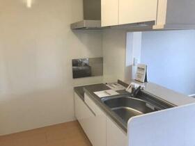 ロイヤルガーデンKIRINOKI Ⅱ 202号室のキッチン