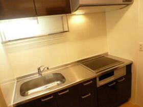 オプティマール B 202号室の洗面所