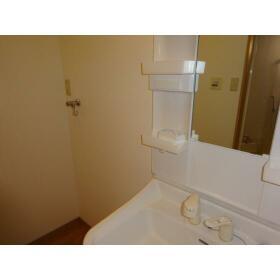 Petio 湊 101号室の洗面所