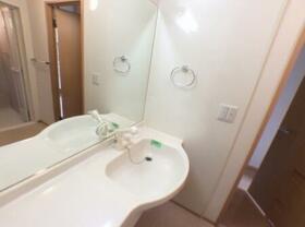 シェルメゾン B 101号室の洗面所