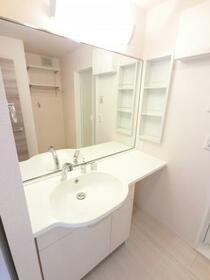 BSvilla B 201号室の洗面所