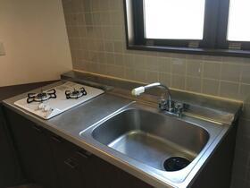 緑園都市リルターラックスマンション壱番館 205 205号室の洗面所
