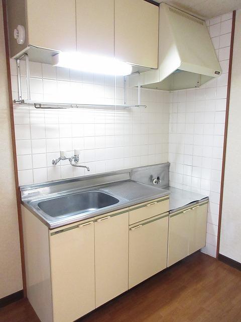 エルディム藤ニュータウン2 01010号室のキッチン