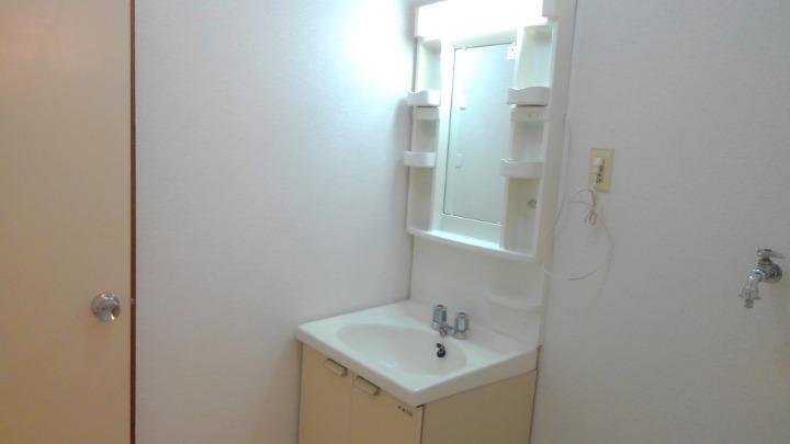 エルディム川島 01010号室の洗面所