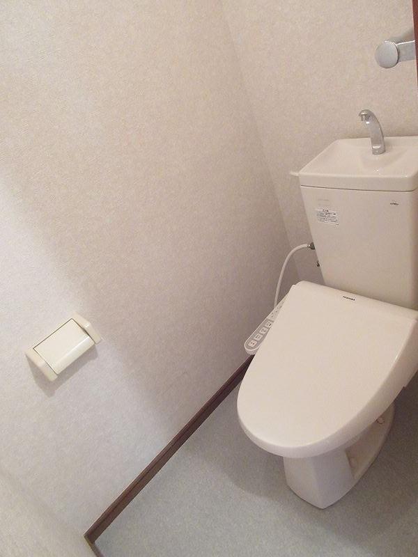 ハイツユーユー 01010号室のトイレ