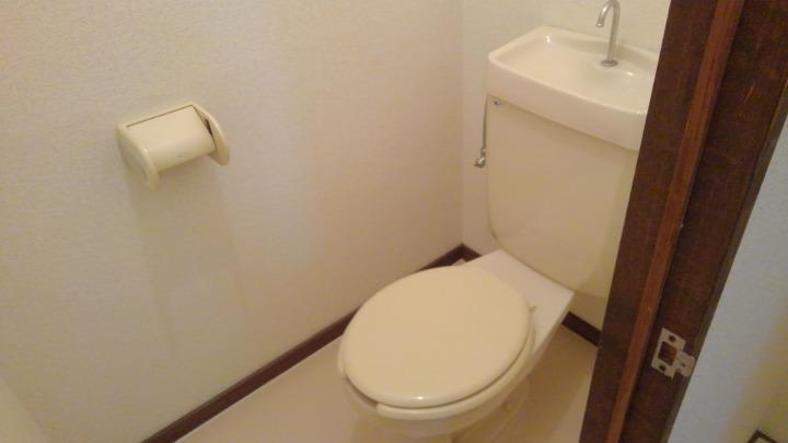 エルディム酒井 01010号室のトイレ