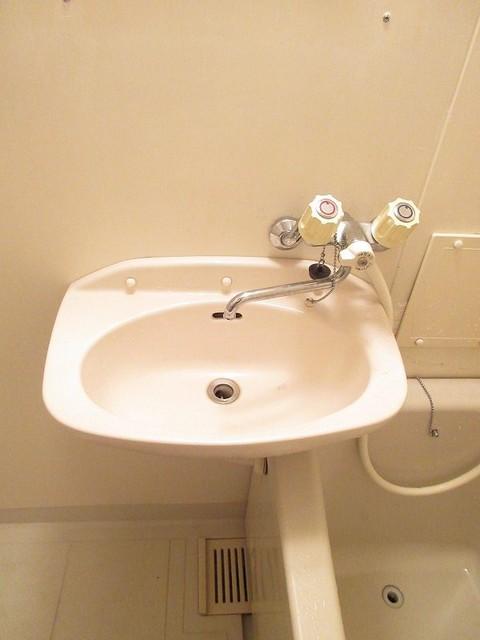 エルディムリバーサイド 01040号室の洗面所
