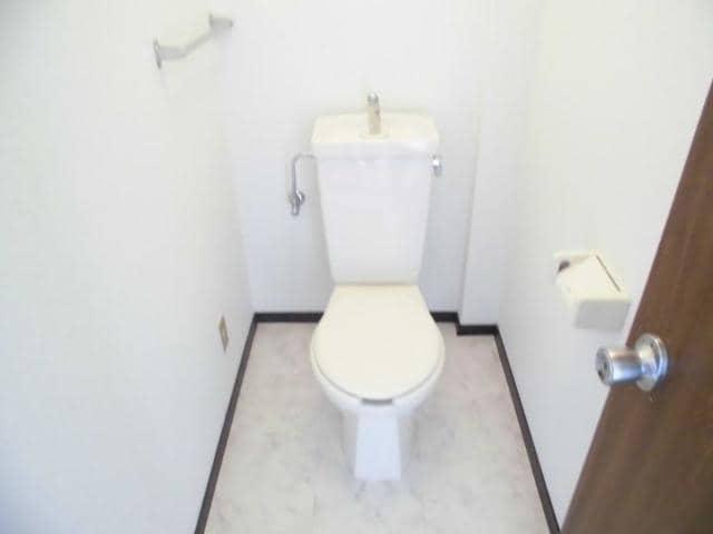 ニューマリッチ石川壱号館 04040号室のトイレ