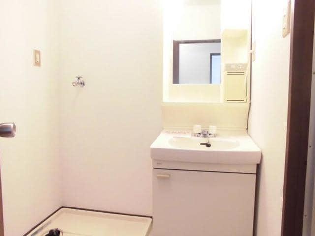 ニューマリッチ石川壱号館 04040号室の洗面所
