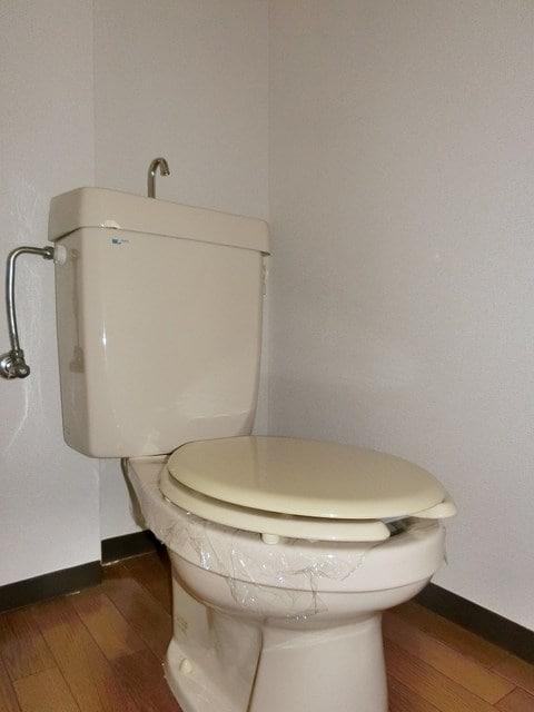 メゾンベールB 01020号室のトイレ