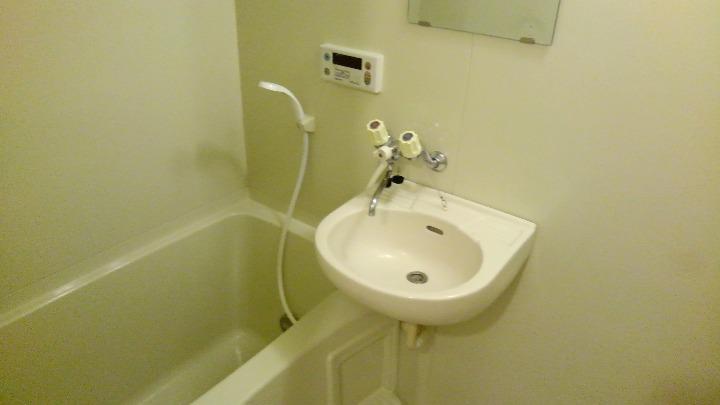 エルディム美鈴 01060号室の風呂